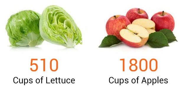 Lettuce and apples comparison